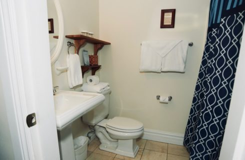 White bathroom with a pedestal sink, toilet, and blue patterned shower curtain.