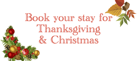 Green backgrounded text with the words book your stay for Thanksgiving & Christmas.